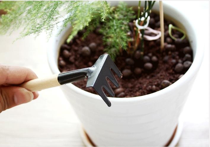Bộ cuốc xẻng làm vườn mini