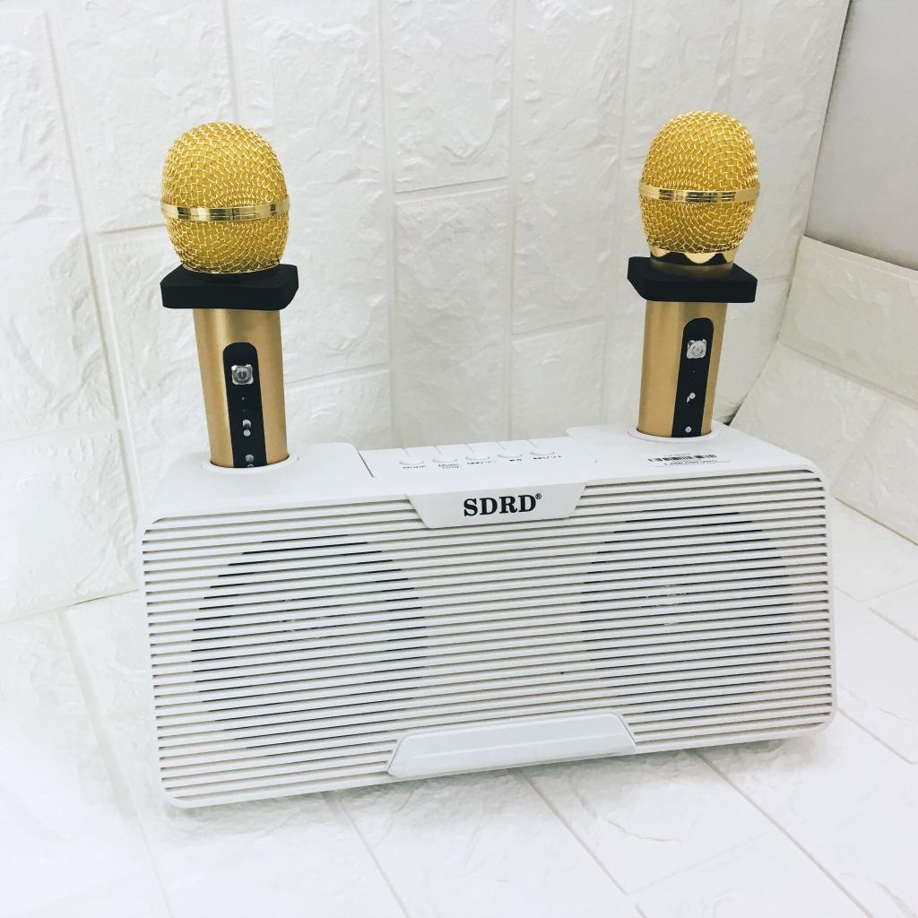Loa karaoke mini SD 302